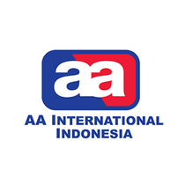 AA International